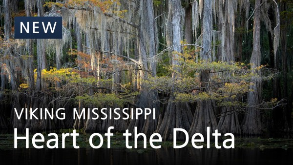 Heart of the Delta