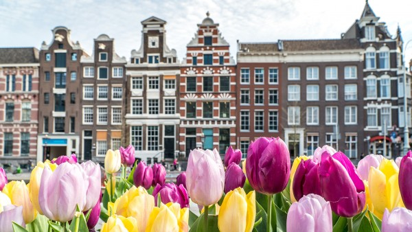Learn about our Tulips & Windmills itinerary with Joost Ouendag