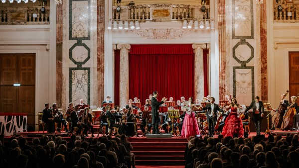 Meet the Vienna Residence Orchestra