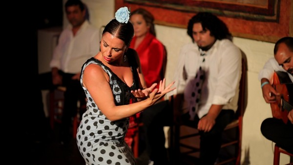 Catch The Fire of Flamenco
