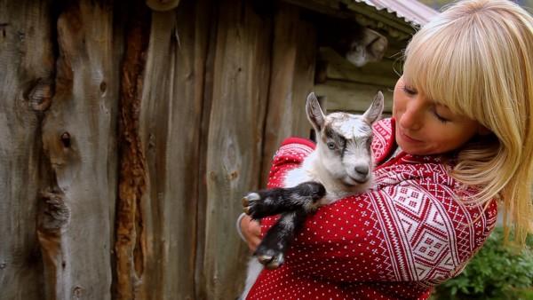Gjetost - Norwegian Goat Cheese