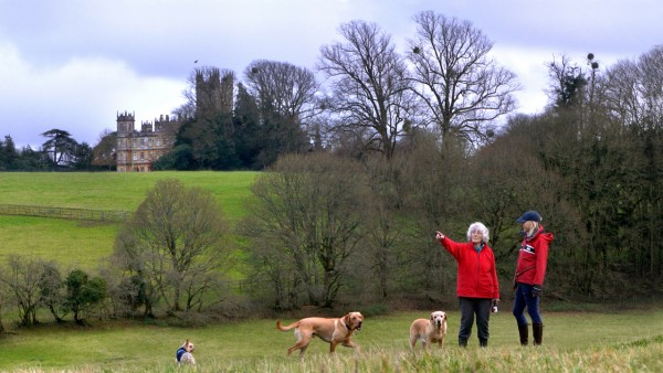 "Highclere Behind the Scenes: Gwyn, ""The Butterfly Lady"""