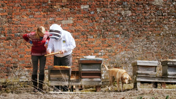 Mike the Beekeeper at Highclere