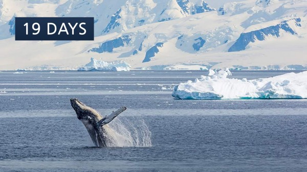 Antarctic & South America Discovery
